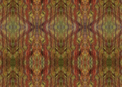 Rain Forest (ST0451) : Exotic wall covering pattern of burnt sienna and green/yellow polished rock with the feel of stained glass or a detail from a Klimpt painting. © 2015 Doug Garrabrants