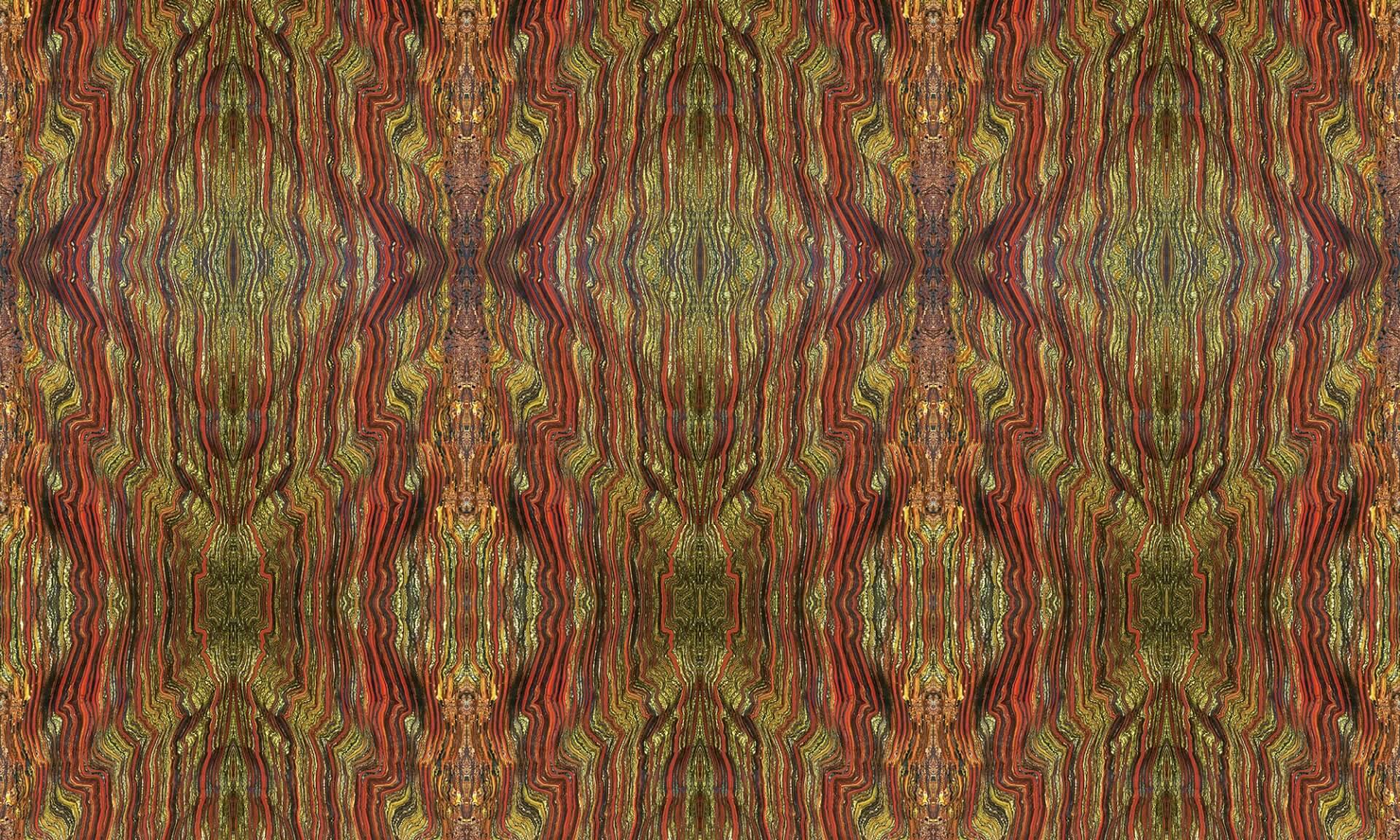 Rain Forest Doug Garrabrants
