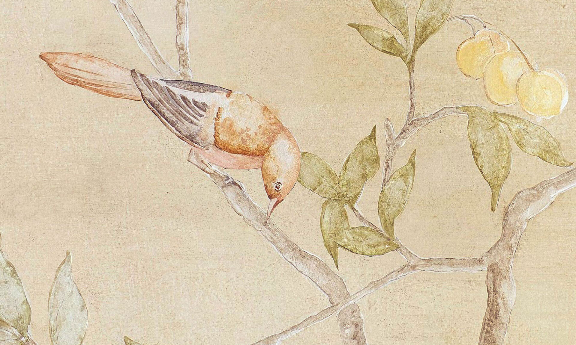 Teapaper Chinois Detail 1 Lena Fransioli & Brooke Sheldon