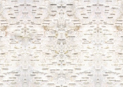 Birch Bark (NA3572)-Detail : Giclée wallpaper created from Birch bark. © 2012 Doug Garrabrants