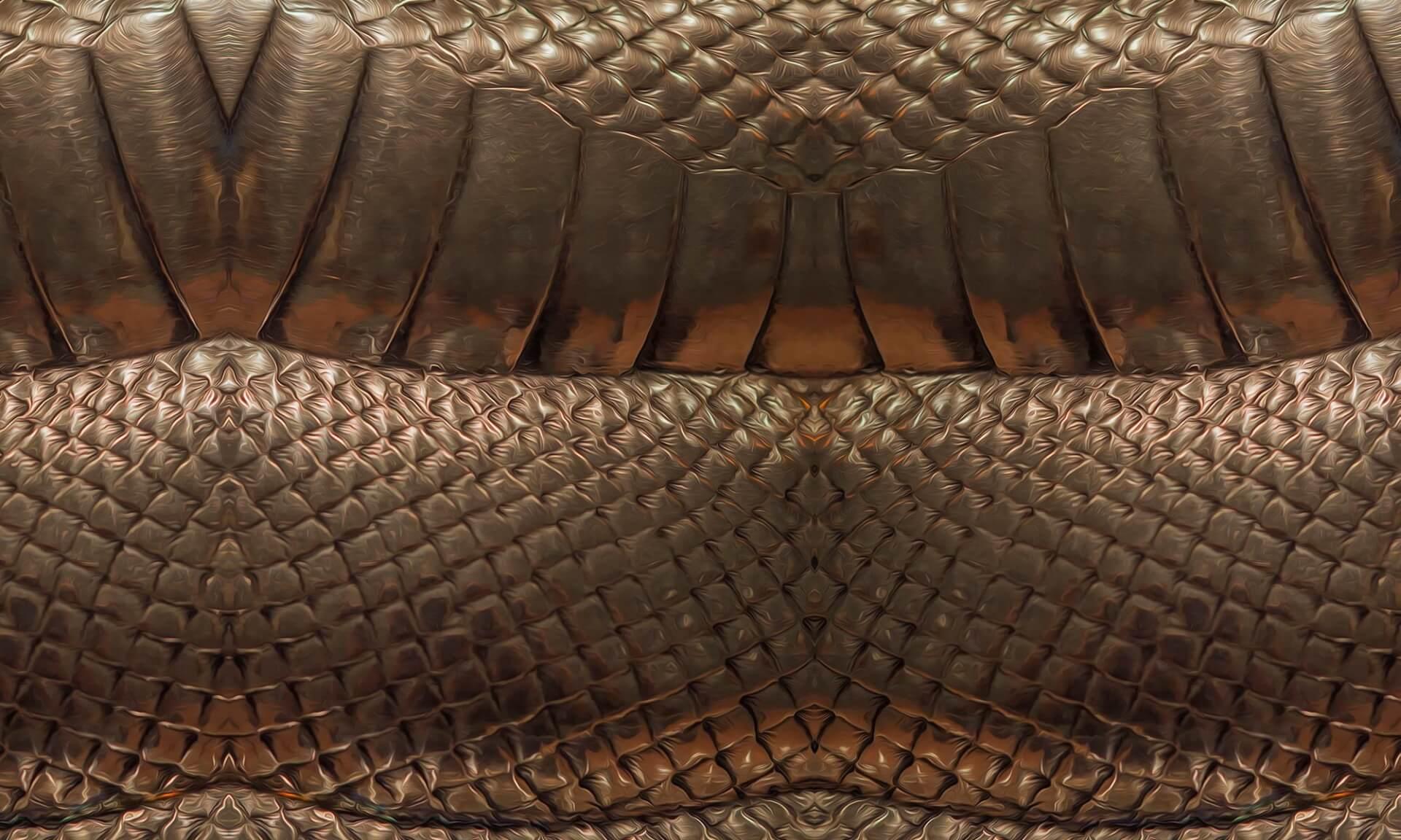 Smaug(DE0950)-Detail Doug Garrabrants