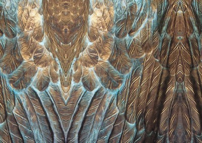 "Dark Angel (DE3333)-Detail ; From the verdegris bronze or an angel's wings, comes this pattern with a 14"" x 22"" repeat. © 2009 DOUG GARRABRANTS"