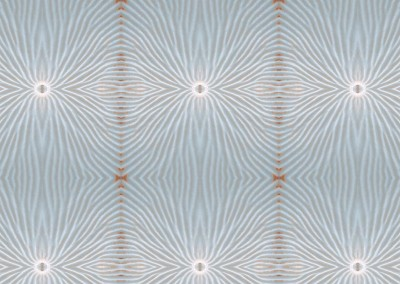 "Nautilus Flower (NA8812-Blue) : Wallpaper Pattern created from a Natulus shell. 10"" x 11"" repeat. © 2014 Doug Garrabrants"