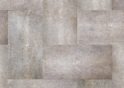 Shagreen Chevron (NA3189B) : Chevron wallpaper pattern created from the leather hide of a shark. © Doug Garrabrants 2013