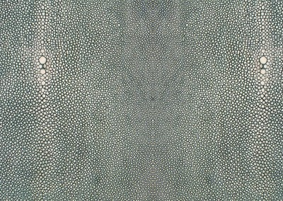 Shagreen Sheet (NA1409) : Chevron wallpaper pattern created from the leather hide of a shark. © Doug Garrabrants 2013