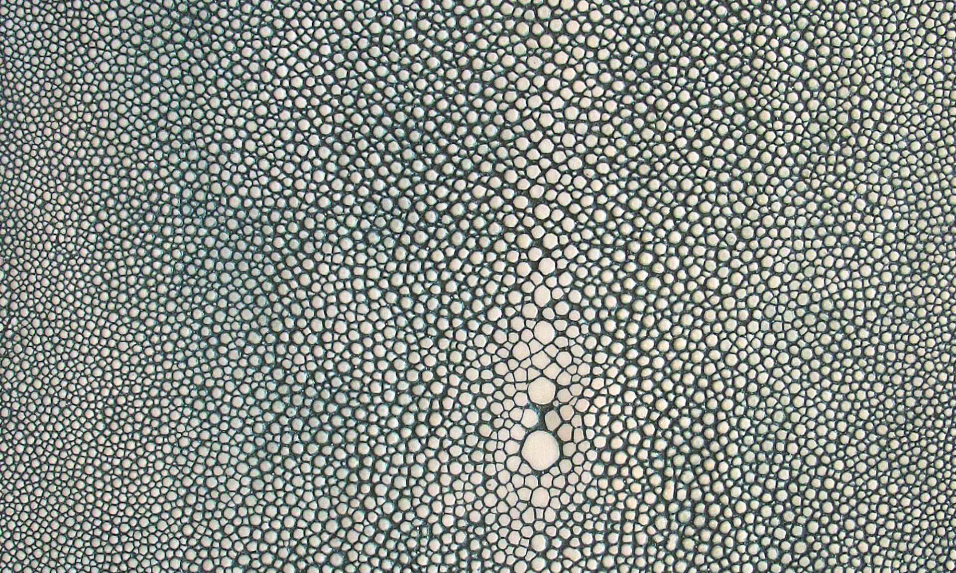 Shagreen Sheet (NA1409) Doug Garrabrants