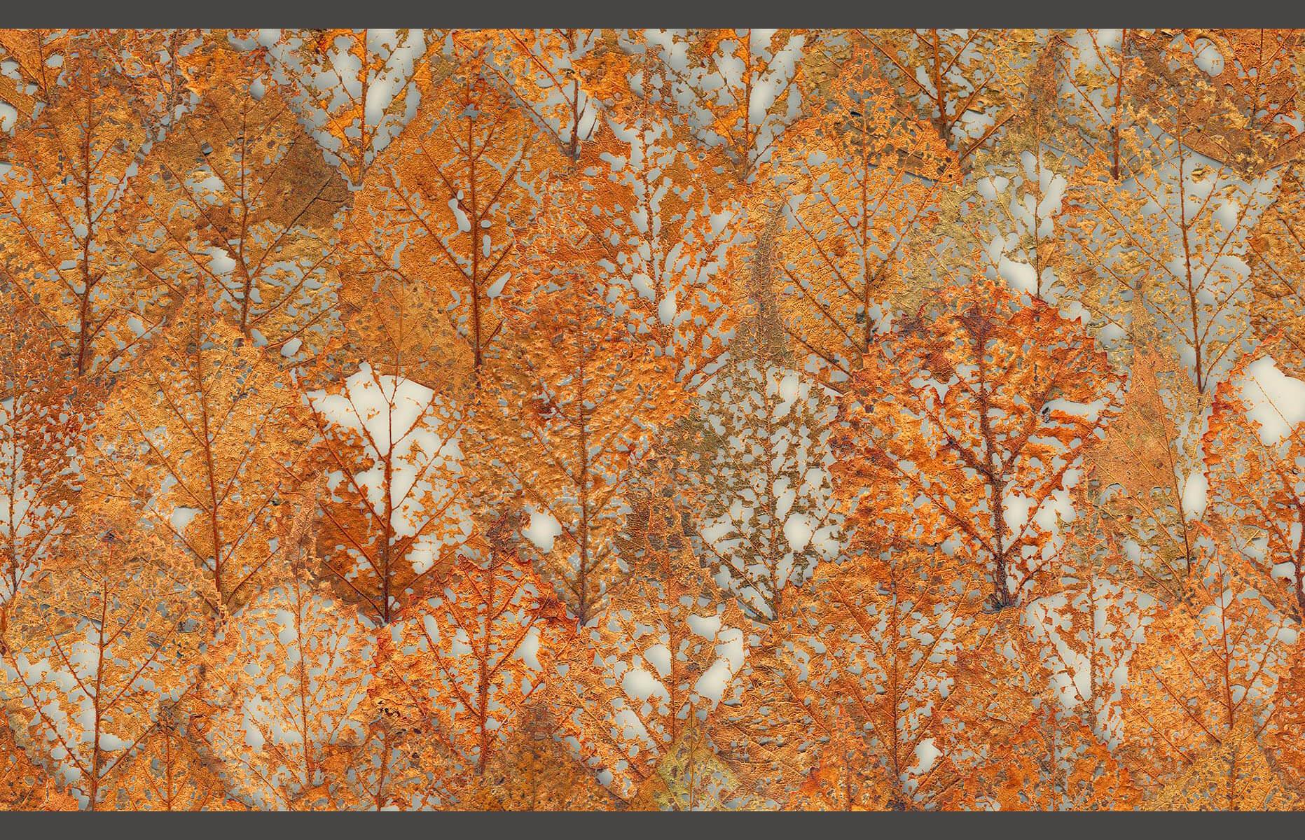 Fall Leaves Layered Detail Doug Garrabrants