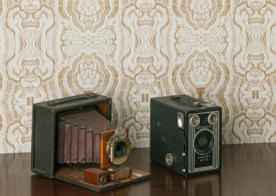 "Malachite Toupe (41%) : Wallpaper Pattern created from the a hand painted malachite by Lena Fransioli. Shown here with a Kodak, ""Brownie Target Six-16"" and  a Rochester Optical Co., ""Pony Premo D"" camera. © 2013 Doug Garrabrants"