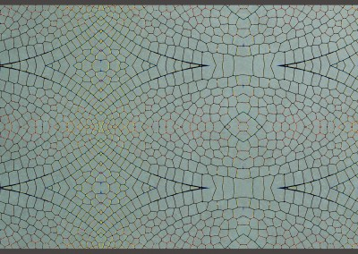 "Dragonfly Wing (17x10) : Pattern created from a dragon fly's wing floated over a green glaze background. Repeat 16.8"" x 9'5"". © 2005 DOUG GARRABRANTS"