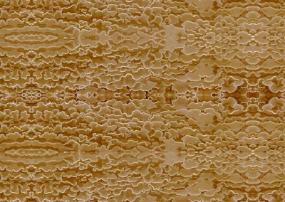 "Frills (NA4021) : Nature has it's own beauty. This pattern produced from a group of mushrooms Looks best at a repeat of 10.3"" x 2.7"" But can be printed as large as 40.5"". © 2012 Doug Garrabrants"