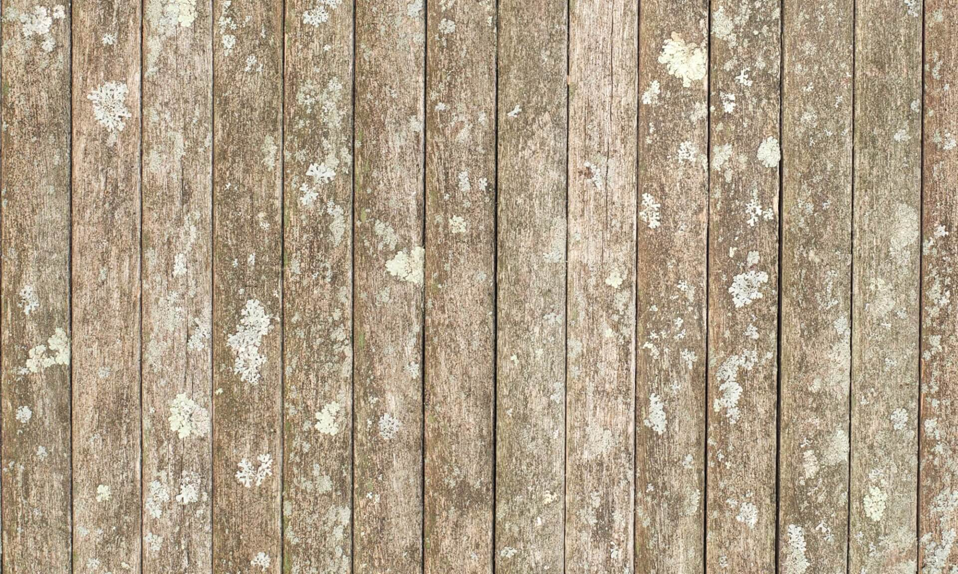 Rustic (Slats or teak and lichen)