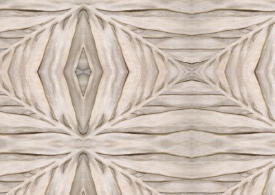 "Palm Frond (DE0959) : Wallpaper pattern made from palm fronds sculpted into marble with a 67"" repeat. © 2015 Doug Garrabrants"