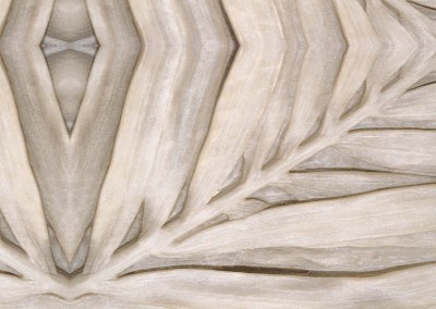 "Palm Frond (DE0959)-Detail : Wallpaper pattern made from palm fronds sculpted into marble with a 67"" repeat. © 2015 Doug Garrabrants"