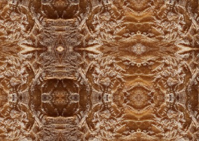Southwestern Spun (Bread-1) : Wallpaper pattern created from a close up photo of a fresh cooked loaf of bread. © Doug Garrabrants 2011