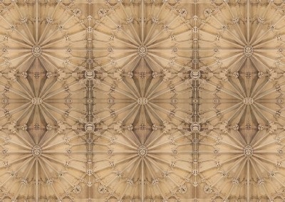 Cathedral Ceiling : Raise the ceiling in your library or foyer and enrich your house with a feeling of history. This photo represents a 27 x 18 foot ceiling, we can customize to fit yours. © 2014 Doug Garrabrants