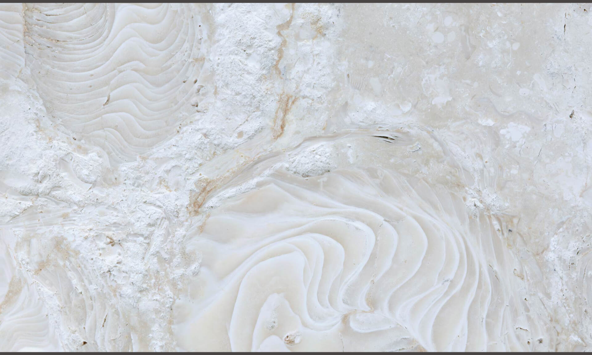 Natural Coral Stone Tile