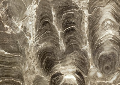 Moria (ST0457)-Detail : Fossil stone patterned monochromatic wallcovering with a 67' max. repeat. © 2014 DOUG GARRABRANTS