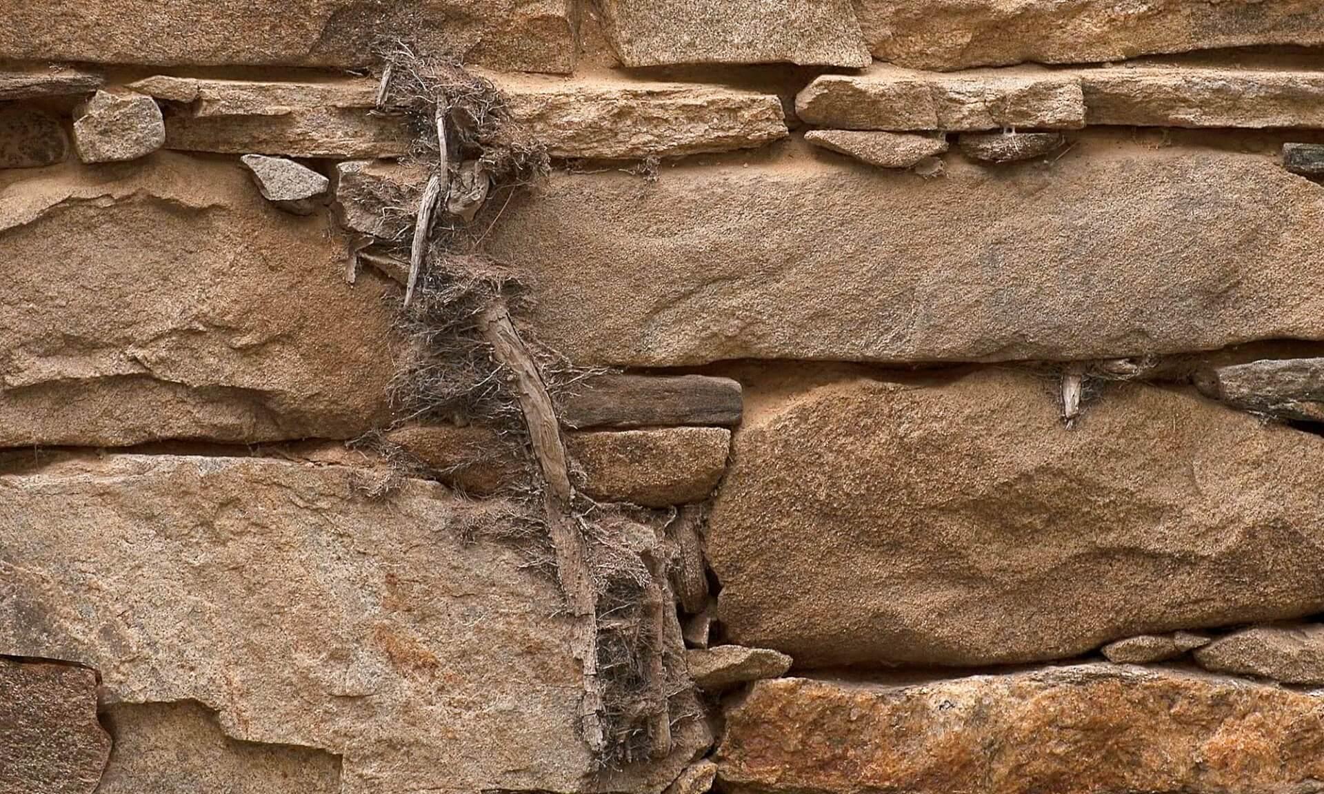 Stone Barn Doug Garrabrants