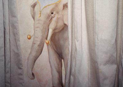 Harlequin Pattern Detail / Animals